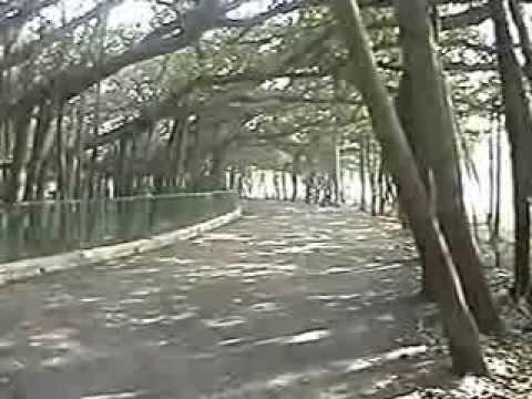 nikon view nx2 tutorial